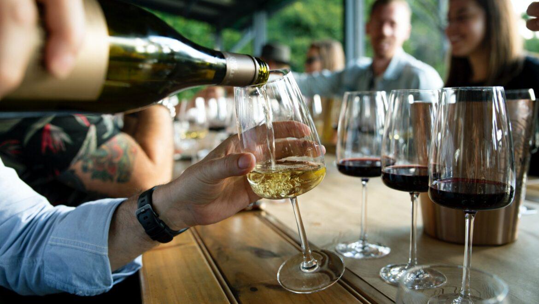 schede dei vini